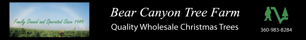 Bear Canyon Tree Farm - Banner