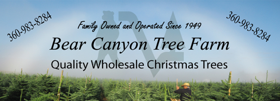 Bear Canyon Tree Farm Banner